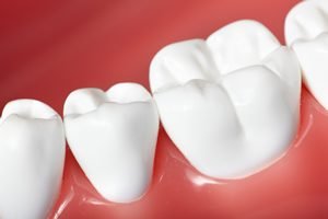 View of teeth and gums